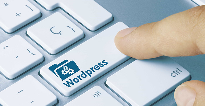 Never Use WordPress to Send Newsletter Emails